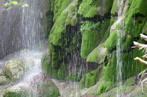 800px-Base_of_Gorman_Fall_like_Raining